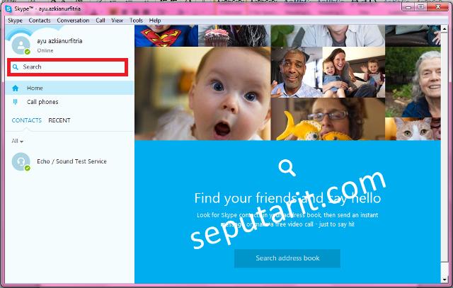 Tampilan aplikasi skype