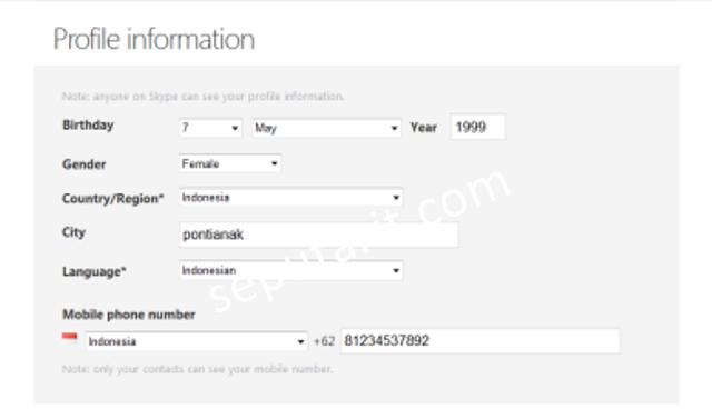 Kolom kedua data pengisian (Profile informatiom)