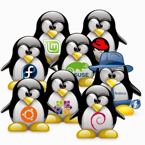 Versi dan Variasi LINUX OS