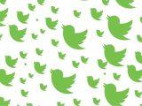 Cara Efektif Menambah Traffic Website Melalui Jejaring Sosial Twitter